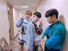 Wanna-One - Woojin, Jaehwan, Daniel - Triple Position Ong Seung Woo, First Boyfriend, Produce 101 Season 2, Guan Lin, Kim Jaehwan, Ha Sungwoon, Fans Cafe, Kpop, Seong