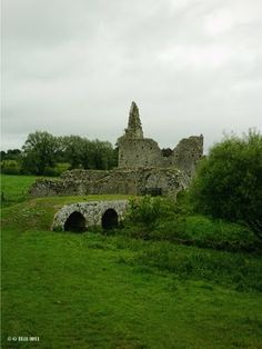 Ireland In Ruins: Athassel Abbey Co Tipperary