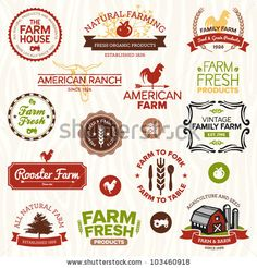 Set of vintage and modern farm logo labels and designs by Mike McDonald, via Shutterstock