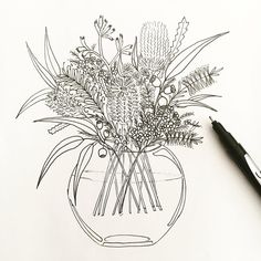 I'm so happy to have finally drawn this piece! I wanted to have this illustration finished in time for last… Australian Wildflowers, Australian Native Flowers, Australian Plants, Wildflower Drawing, Wildflower Tattoo, Flower Bouquet Drawing, Flower Art, Illustration Blume, Botanical Illustration