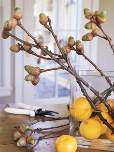 Scout the backyard for some shapely branches with character to create a charming tabletop arrangement. Fill a large glass vase halfway with oranges and water to hold the branches in place.
