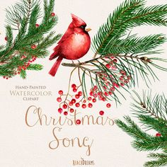 Christmas Birds Red Cardinals. Watercolor Bouquets by ReachDreams