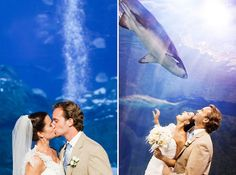 Light Blue + Purple Aquarium Wedding in Camden, NJ | Images by Cassi Claire Photography