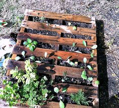 DIY Pallet Projects: 55 Incredible Ways To Reuse Pallets for Decor and Furniture and Everything Inbetween - The Thrifty Couple Pallet Crafts, Pallet Art, Diy Pallet Projects, Pallet Ideas, Wood Crafts, Backyard Garden Landscape, Backyard Farming, Garden Art, Wooden Pallets