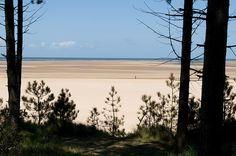 Rod finds haven at Holkham Beach, Norfolk