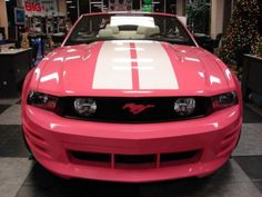 New 2019 Luxury Model Vehicles Either Here or On the Way – Auto Wizard Pink Mustang, 2012 Ford Mustang, Mustang Girl, Ford Mustang Shelby Gt500, Cheap Sports Cars, Dodge Muscle Cars, Muscle Cars For Sale, Ikea, Ford Classic Cars
