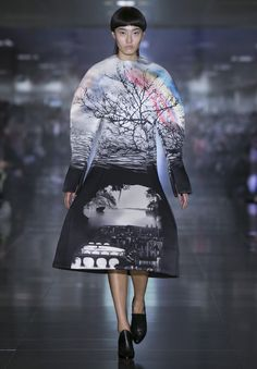 Autumn Winter 2013 collection by Mary Katrantzou - the prints are amazing