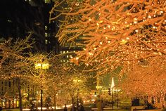 Montreal | 10 Most Festive Christmas Cities http://www.mydesignweek.eu/10-most-festive-christmas-cities/#.UoH-zuL7HIV7