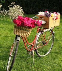 bicicletas adornadas con flores - Buscar con Google