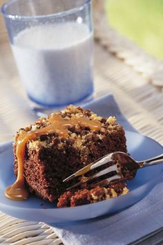 Your picnic or BBQ guests will go nutty for this decadent chocolate-chocolate chip cake. It just takes six ingredients and three easy-peasy steps! No need to frost, either; the pecans, chocolate chips and brown sugar melt together on top of the batter to make a crunchy baked-on topping.