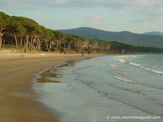 Scarlino beaches - La Polveriera spiaggia - Follonica Maremma Tuscany