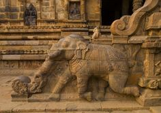 Rock Cut Bas Relief On The Stairs Of A Running Elephant At… | Flickr
