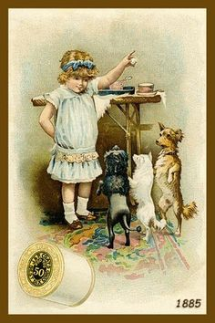Nice dogs on two feet   vintage trade card...