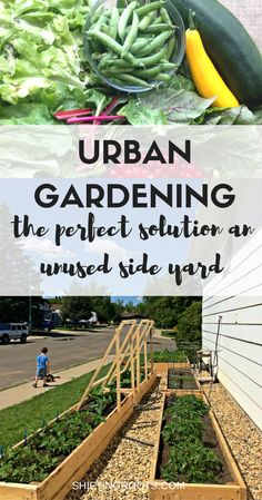 If you've ever lived on a corner lot, you'll be familiar with the wasted space known as the side yard. Put that outdoor space to use and make an urban garden with raised beds and crushed rocks. Keeps the weeds and plants under control so you can manage to garden even with your busy life.