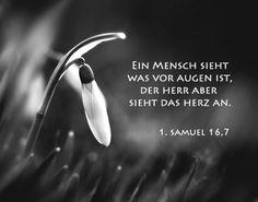 christliche Postkarte 37 - Psalm 62, Trost, Zuversicht ...