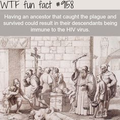 WTF Facts : funny, interesting & weird facts — Immune to the HIV Virus - WTF Fun Facts Wow Facts, Wtf Fun Facts, Funny Facts, Random Facts, Strange Facts, Creepy Facts, History Memes, History Facts, European History
