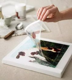 Photo transfers are a fantastic way to print a design onto a surface without having to go through complicated processes or painting it yourself. It allows you to display stunning pictures and designs without having to copy them by hand or having someone else do it, which can be expensive at times. You can do …