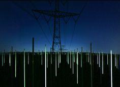 Richard Box's installation called Field.