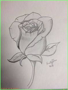 What is Your Painting Style? How do you find your own painting style? What is your painting style? Is there a way to make sure you have it? Pencil Art Drawings, Art Drawings Sketches, Tattoo Drawings, Cool Drawings, Tattoos, Unique Drawings, Tattoo Art, Flower Sketches, Rose Sketch