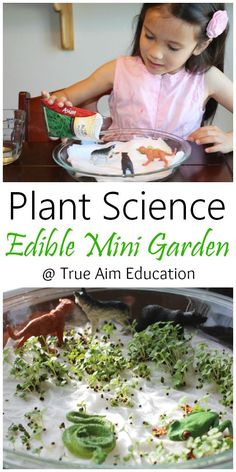 Plant Science: Grow sprouts quickly in an Edible Mini Garden