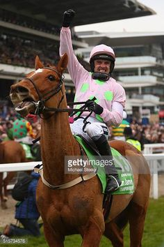 Horse Racing Books, Race Horses, Champion Hurdle, Hurdles, Victorious, Annie, Riding Helmets, My Favorite Things, Celebrities