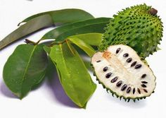 Nutrient content and Health benefits of Soursop Fruit to