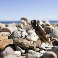 #beach #hornbaek #summer