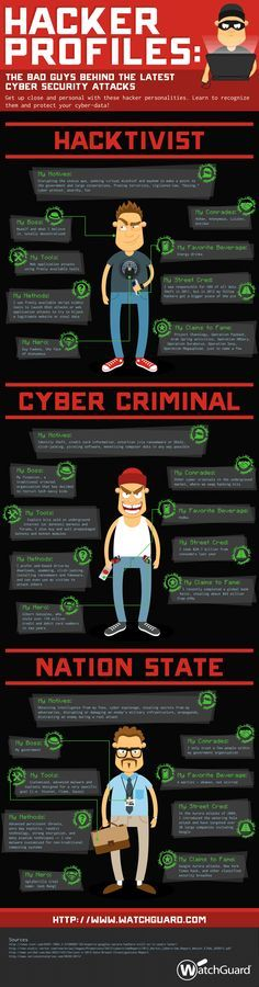 Hacker Profiles Infographic