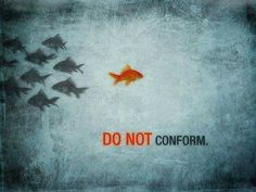 """Romans 12:2  """"And do not be conformed to this world, but be transformed by the renewing of your mind, that you may prove whatisthat good and acceptable and perfect will of God."""""""