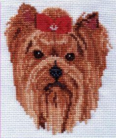 Yorshire Terrier Cross Stitch $5.00