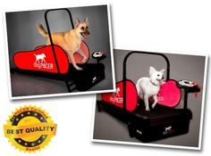 DogPacer Award Winning Pet Treadmills (small & large) on sale @Coupaw
