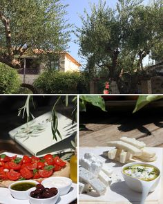 We always source our ingredients locally, such as our extra virgin olive oil that is harvested from the olive trees on the property. Olive Tree, Olive Oil, Harvest, This Is Us, Villa, Trees, Table Decorations, Tree Structure, Fork