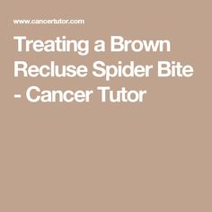 Treating a Brown Recluse Spider Bite - Cancer Tutor