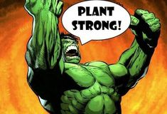 Pro vegan: plant strong, this is what it feels like Vegetarian Humor, Vegan Humor, Fit Board Workouts, Easy Workouts, Workout Exercises, Plant Based Eating, Plant Based Diet, Pea Protein Powder, Vegan News