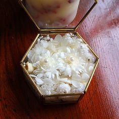 真鍮のかわいい六角形のガラスBOXにホワイト&オフホワイトのお花や木の実をふんわりつめこみました。中央に並んであるふたつのお花の上には、ホワイトパール(アクリル)がちょこんとのりリングのアクセントに。ウエディングが終わっても、ジュエリーBOXにどうぞ。またプレゼントに。。アクセサリーを贈られるGIFTBOXに。。インテリアにも。。ぜひどうぞ。■六角形真鍮ガラスボックスサイズ : 約7×7 cm 高さ約3.7cm(11cmスクエア 白いお箱入り)※ドライ&プリザーブドフラワーは、非常にデリケート素材な為、手で触れたりすると、花びらが割れたり、切れたりすることがあります。お取り扱いには十分お気をつけください。※ご注文をお受けいたしまして、おつくりさせていただいております。花材は同じですが、お花の個体差がございますのと、ハンドメイドなため、多少フォルムに違いがでてまいります。何卒ご了承の程よろしくお願いいたします。 Wedding Boxes, Wedding Cards, Wedding Ceremony, Ring Pillow, Pillow Box, Pillow Inspiration, Wedding Inspiration, Ring Holder Wedding, Wedding Rings