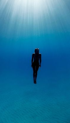 Underwater Photography by Enric Adrian Gener Under The Water, Under The Sea, Underwater Photos, Underwater Photography, Ocean Underwater, Nikon Photography, Color Photography, White Photography, Street Photography