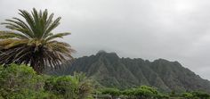 Hawaii Urlaub: Eine Kostenübersicht für 3 Wochen auf den Trauminseln!