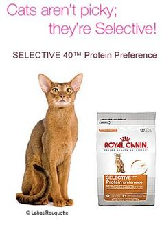 Royal Canin Selective Protein Preference 6 Lb 6 lb bag.  #Royal_Canin #Pet_Products
