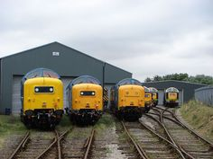 All six preserved deltics at Barrow Hill - British Rail Class 55 - Wikipedia… Electric Locomotive, Diesel Locomotive, Steam Locomotive, Locomotive Engine, Barrow Hill, Best Wagons, Hd Widescreen Wallpapers, Train Pictures, Electric Train