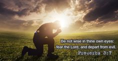 Proverbs 3:7 - 'Be not wise in thine own eyes'