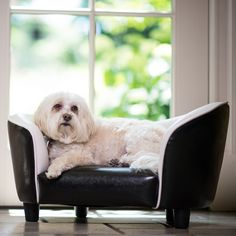 Have to have it. Enchanted Home Pet Original Snuggle Bed - Black/White - $72.01 @hayneedle