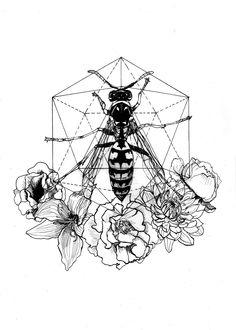 Bee Hexagon