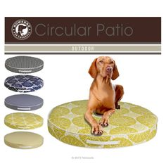 Circular Patio Dog Cushion VERANDA Your Dog Can Lounge by the Pool in Style! Medium to Large > $144.99 to $219.99 Pattern Colors: White with Black, Navy Blue, Green, Yellow Breathable & durable Sunweather outdoor fabric.  Resistant to water, mold, mildew and stains.  Designed to withstand 60,000 double rubs. Fill Content: Polyester fiber topped furniture grade foam. Waterproof white cordura nylon bottom and piping Convenient side handle for easy travel and transport.