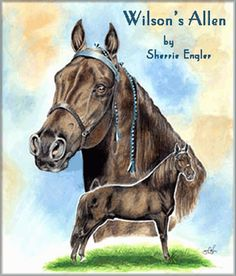 If a list were to be made of the greatest Tennessee Walking Horses of all time, WILSON'S ALLEN would find that his son, Midnight Sun was his only rival for the top spot. Wilson's Allen's blood dominated the male line of the breed for 40 years after his death. He sired 482 registered foals.