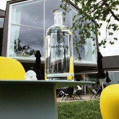 www.brandeau.ch I   Einzug im VitraHaus.  •••  #brandeaubottles #wasser #water #wasserflasche #wassertrinken #wassergenuss #hahnenwasser #stilleswasser #flasche #karaffe #wasserkaraffe #glasflasche #schweizerwasser #tapbottle #tapwater #vitra #vitramuseum #weilamrhein #yellowpantone #pantonchair #vitrahaus #herzogdemeuron #herzogdemeuronarchitects #designcafe