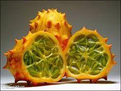 kiwano frucht - Google-Suche