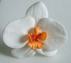 step by step tutorials to help you take  first  steps into the world of sugar flowers.Amazing website1