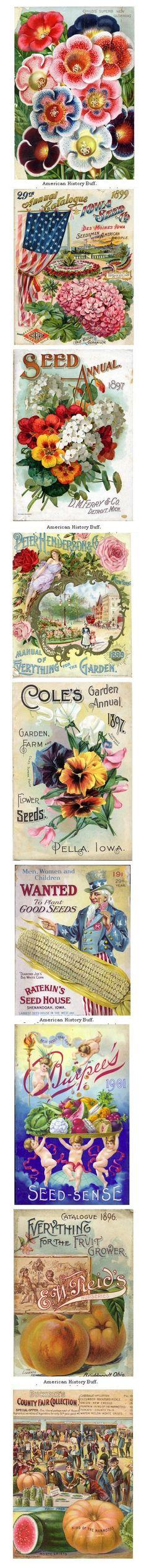 Vintage seed packs