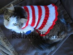 Candy Cane Pet Sweater - Crochet Pattern by Alicia Moore of Featherby & Friends