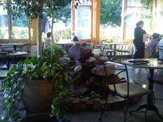 Cafe Flora vegetarian restaurant #seattle #madisonvalley